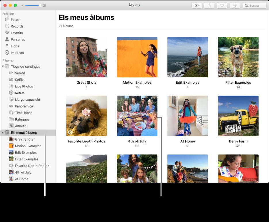 """La finestra de l'app Fotos, que mostra """"Els meus àlbums"""" seleccionat a la barra lateral i els àlbums que has creat, a la finestra a la dreta."""