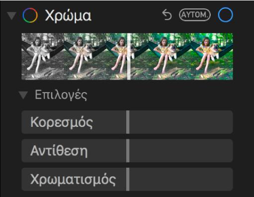 Η περιοχή «Χρώμα» στο τμήμα «Προσαρμογή» που δείχνει ρυθμιστικά για «Κορεσμός», «Αντίθεση» και «Χρωματισμός».