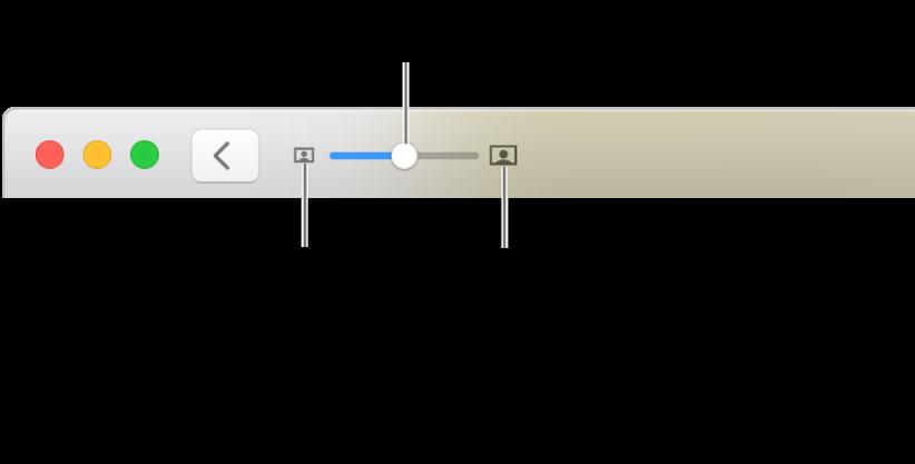 Η γραμμή εργαλείων όπου εμφανίζονται χειριστήρια ζουμ.