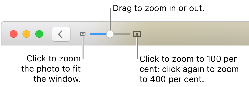 The toolbar showing zoom controls.