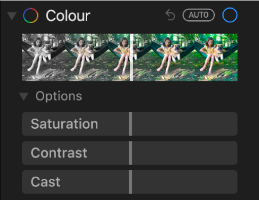The Colour area of the Adjust pane showing sliders for Saturation, Contrast and Cast.
