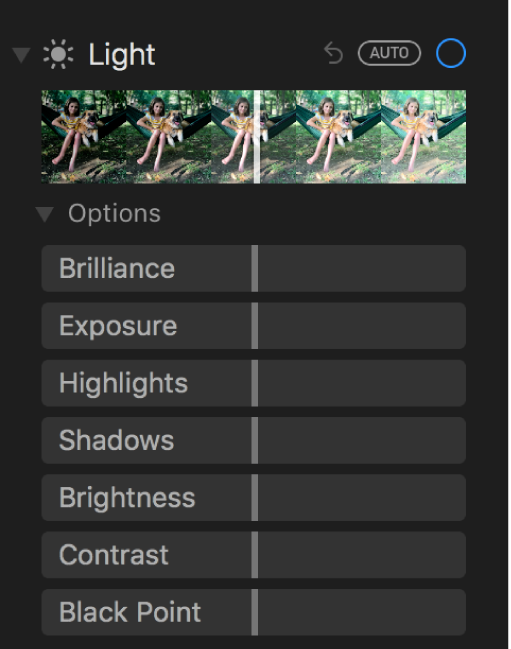 The Light area of the Adjust pane showing sliders for Brilliance, Exposure, Highlights, Shadows, Brightness, Contrast, and Black Point.