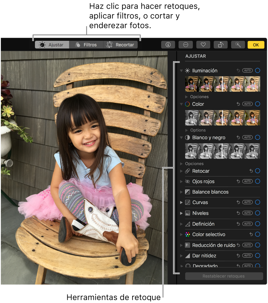Una foto en la vista de edición con las herramientas de edición a la derecha.