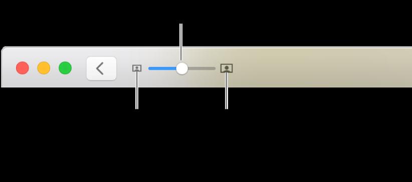La barra de herramientas con los controles de zoom.