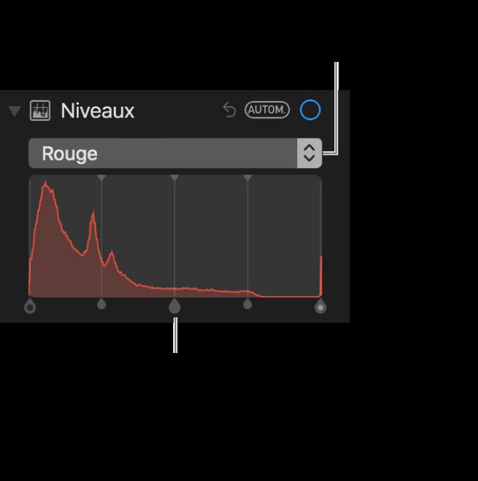 Les commandes de niveaux et d'histogramme permettant de modifier les rouges dans une photo.