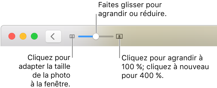 La barre d'outils affichant les commandes Réduire/agrandir.