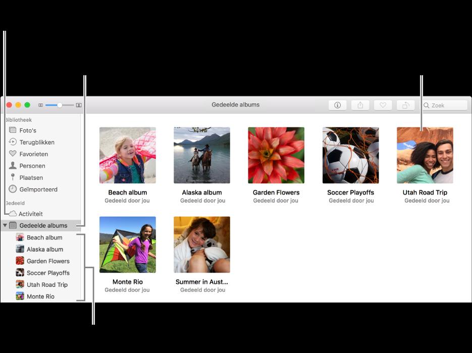 Het paneel 'Gedeelde albums' van het Foto's-venster, met gedeelde albums.