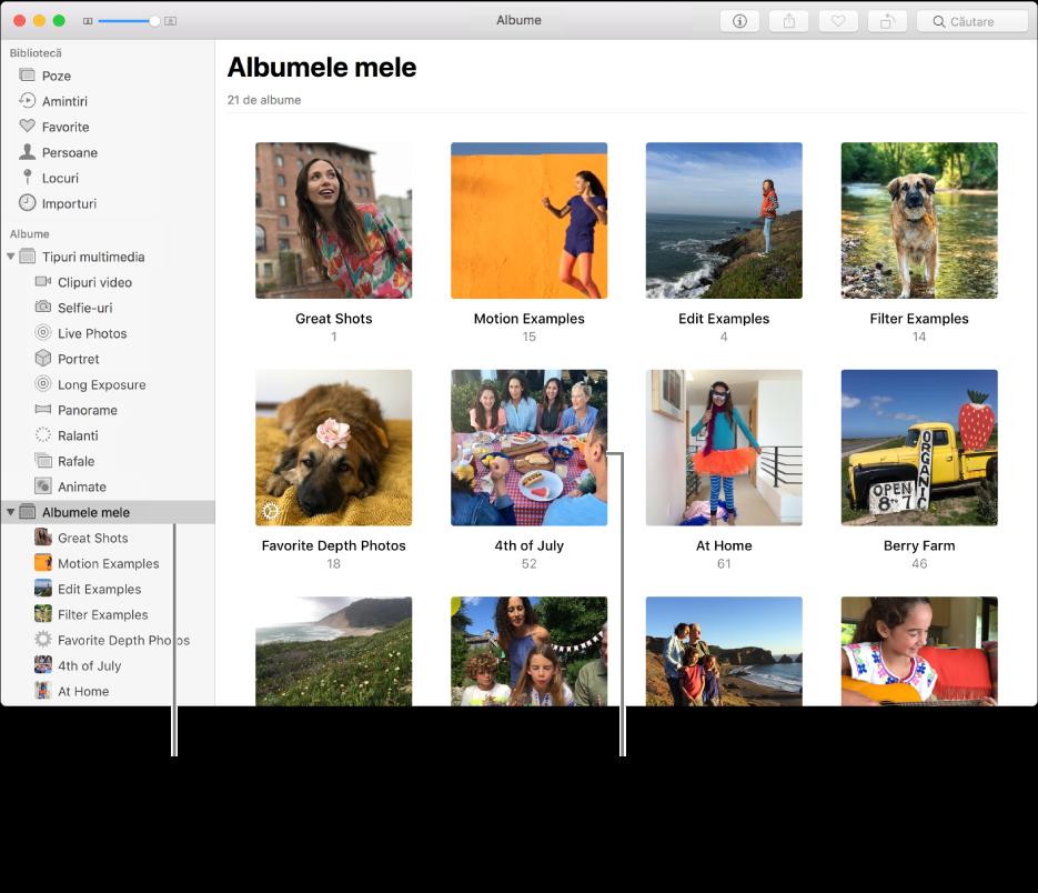 """Fereastră Poze cu dosarul """"Albumele mele"""" selectat în bara laterală și albumele pe care le‑ați creat afișate în fereastra din dreapta."""
