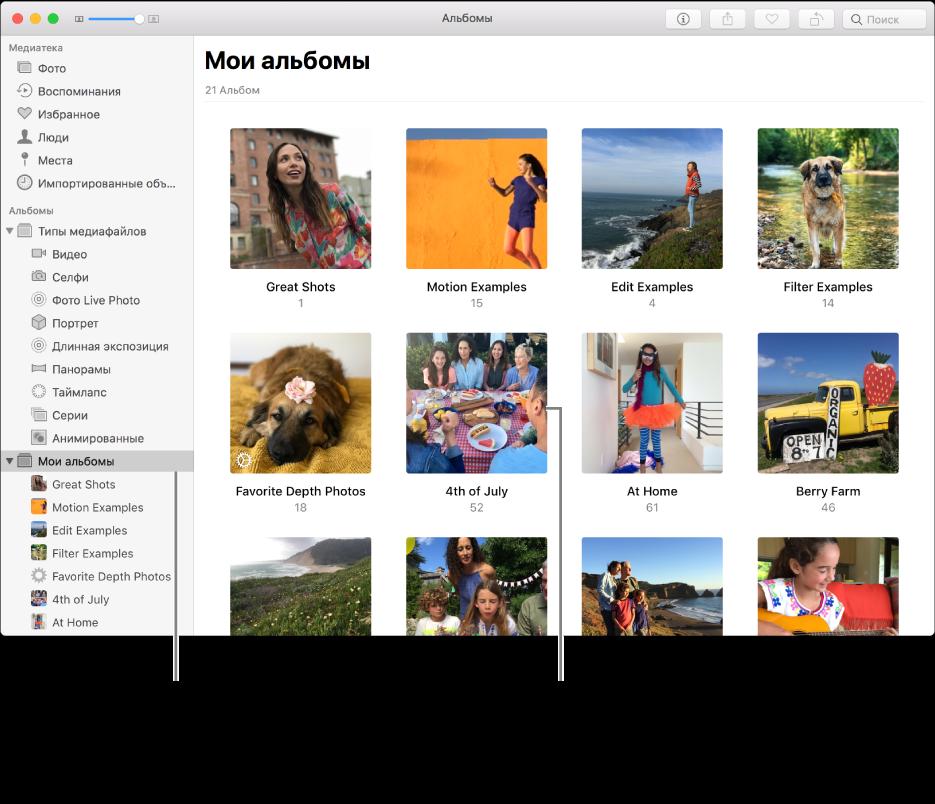 Окно программы «Фото»: в боковом меню выбрана папка «Мои альбомы», а в окне справа отображаются созданные Вами альбомы.