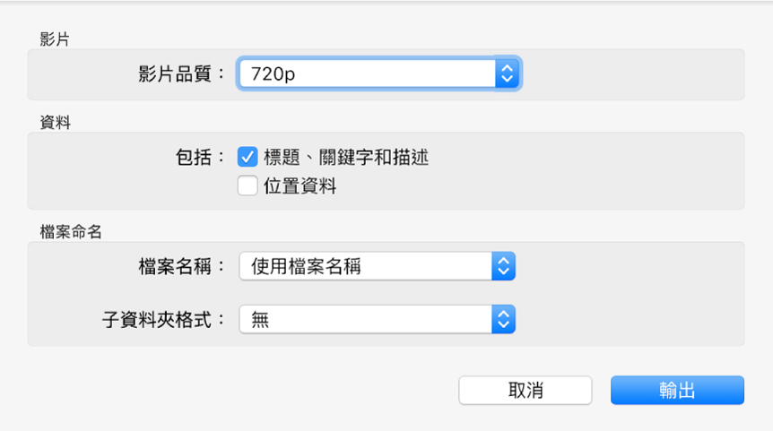 顯示輸出影片之選項的對話框。