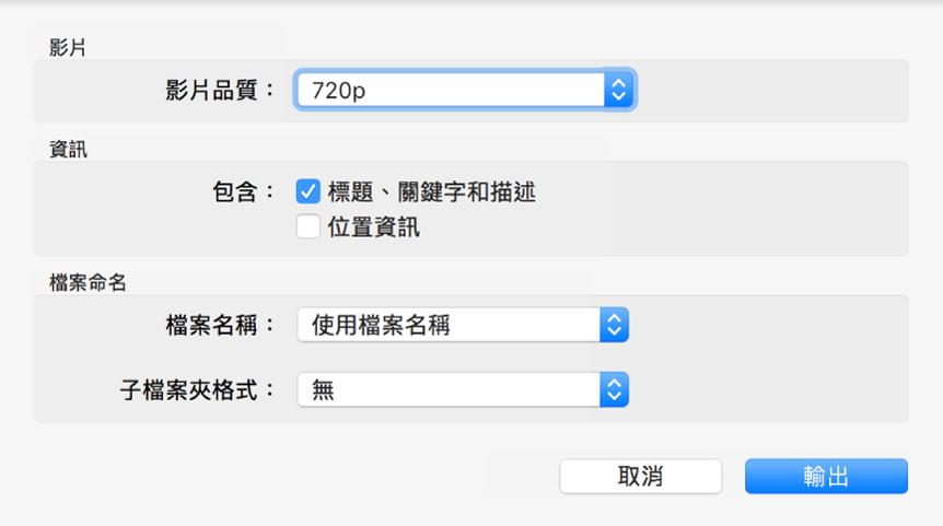 對話框顯示輸出影片的選項。