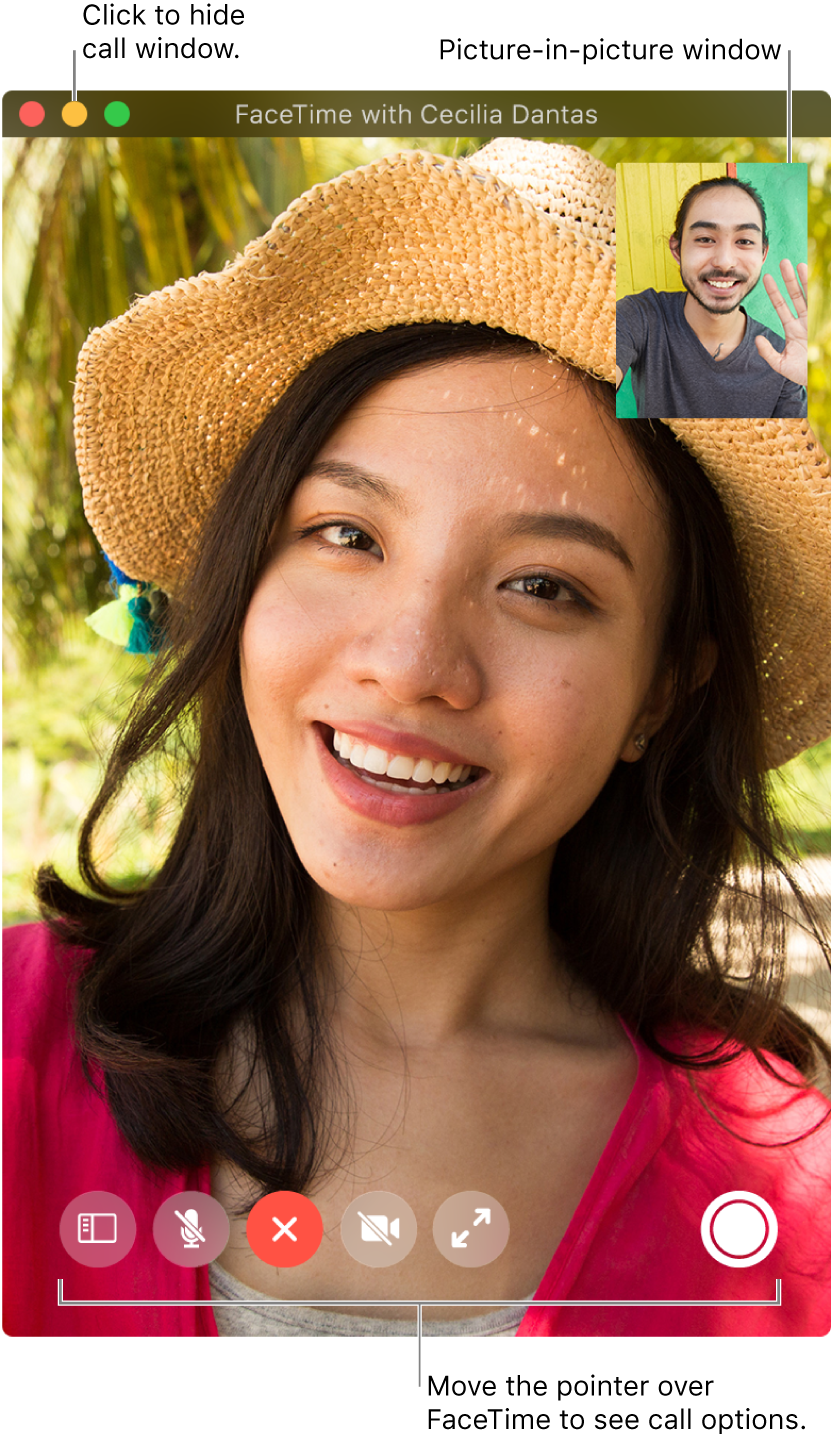 Move the pointer over the FaceTime window to see call options such as the Sidebar, Mute, End Call, Mute Video, Full Screen, and Live Photo buttons. Click the middle button in the upper-left corner to hide the call window. The picture-in-picture window appears in the upper-right corner.