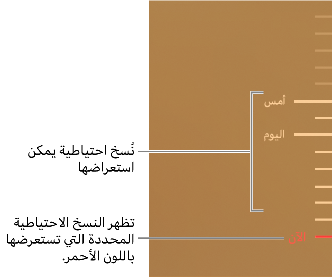 علامات اختيار في المخطط الزمني للنسخ الاحتياطي. علامة اختيار باللون الأحمر تشير إلى النسخة الاحتياطية التي تستعرضها.