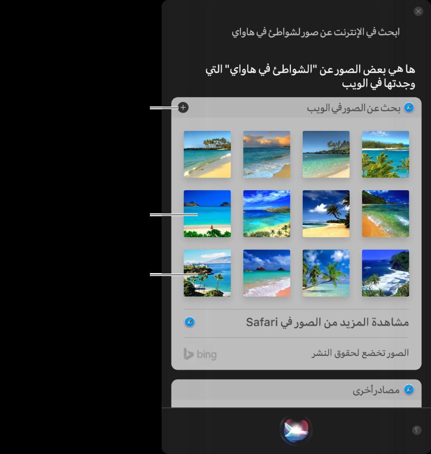 """نافذة Siri تعرض نتائج Siri للطلب """"ابحث في الويب عن صور الشواطئ في هاواي."""" يمكنك تثبيت النتائج في مركز الإشعارات، أو النقر مرتين على صورة لفتح صفحة الويب التي تحتوي على صورة، أو سحب صورة إلى بريد إلكتروني أو مستند أو إلى سطح المكتب."""