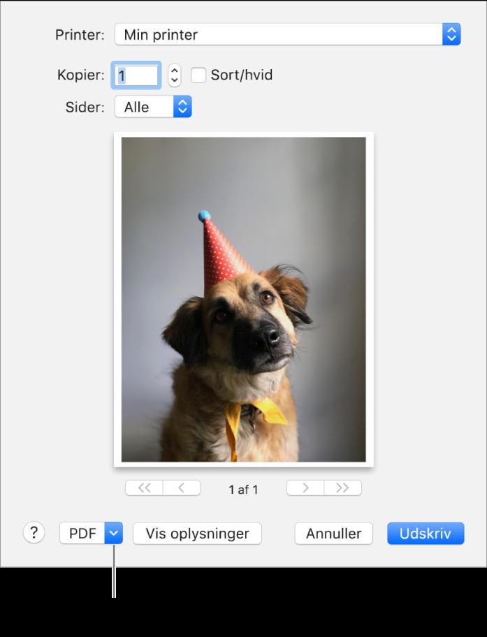 Klik på lokalmenuen PDF, og vælg Arkiver som PDF.