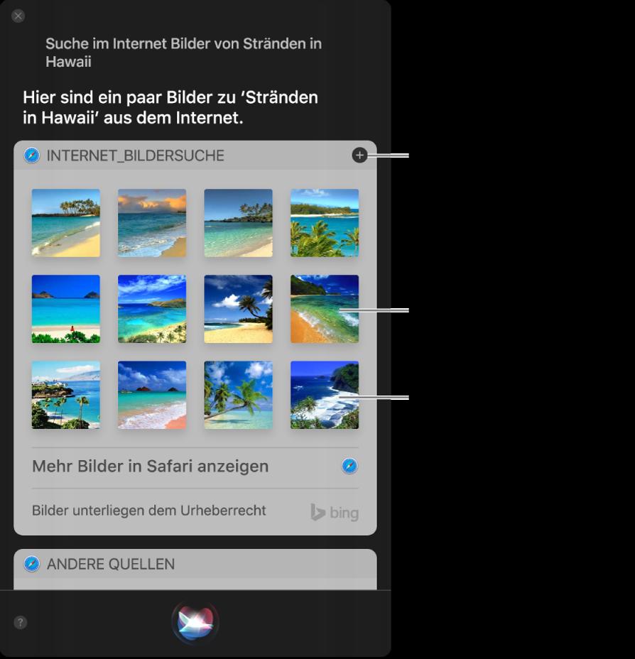 """Das Siri-Fenster mit den Siri-Ergebnissen für die Bitte """"Suche im Internet nach Bildern von Sandstrand"""". Du kannst die Ergebnisse in der Mitteilungszentrale anheften, auf ein Bild doppelklicken, um die Webseite mit dem Bild zu öffnen, oder ein Bild in eine E-Mail oder Dokument oder auf den Schreibtisch bewegen."""