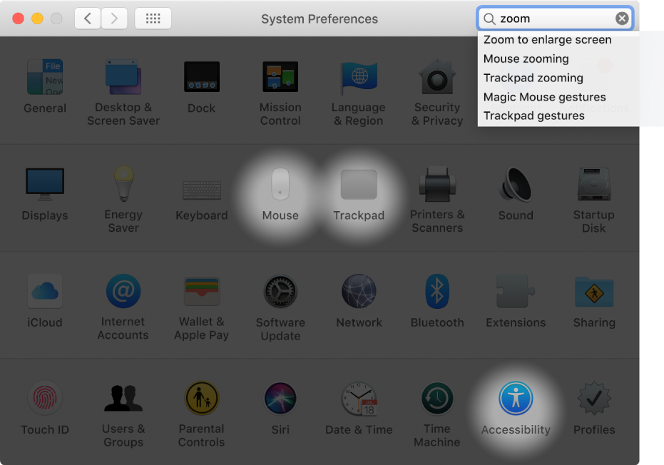 """System preferences window showing """"zoom"""" in the search field, a list of matching search results below the search field, and three preference icons highlighted."""