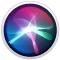 the Siri icon