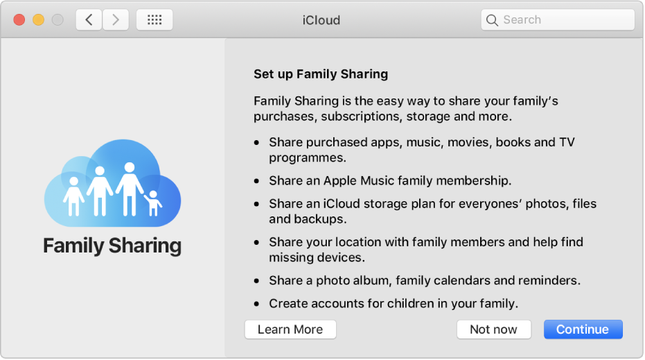 The Family Sharing setup pane in iCloud preferences.