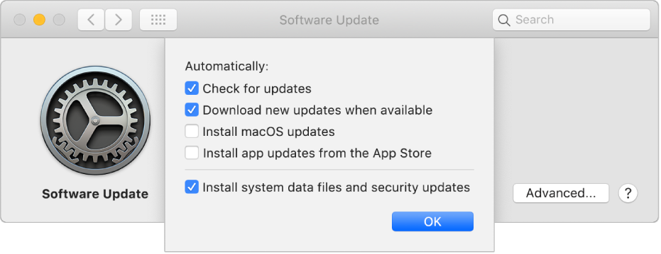 Advanced options for Software Update preferences.