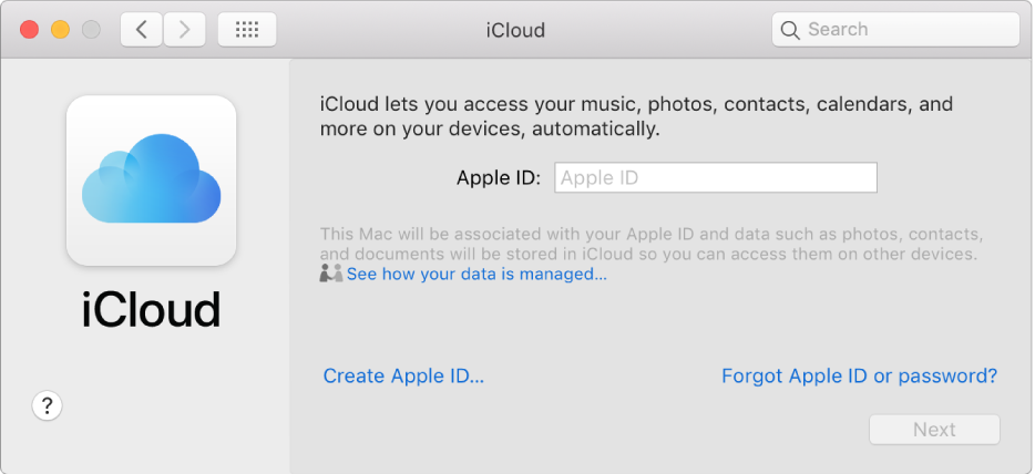 iCloud preferences, ready for entry of an Apple ID name and password.