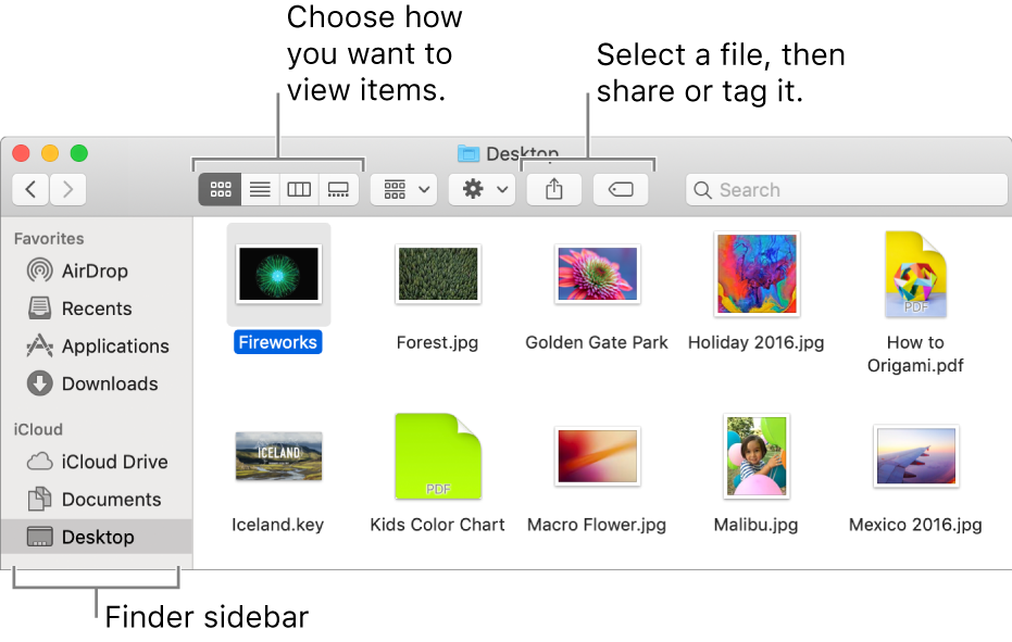 See and organize your files in the Finder on Mac - Apple Support