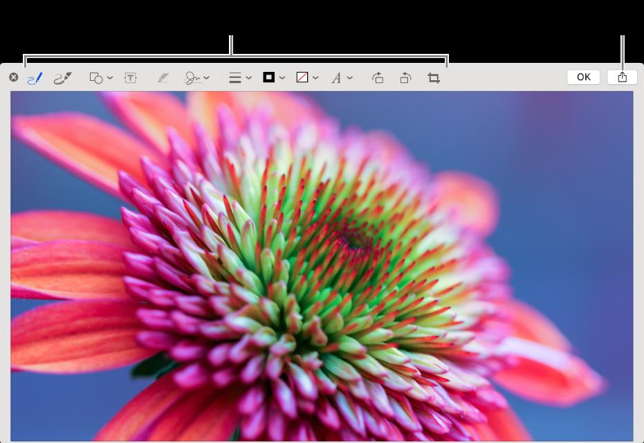 Una imagen en la ventana de Marcado mostrando la barra de herramientas de las herramientas de Marcado y el botón Compartir en la parte derecha superior, junto al botón Hecho.