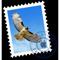 Ícono de Mail