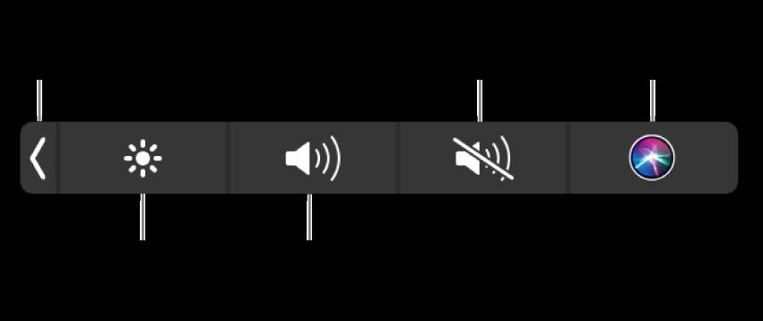 La Control Strip contraída incluye botones, de izquierda a derecha, para expandir la Control Strip, aumentar o reducir el brillo de la pantalla y el volumen, activar o desactivar el sonido, y hacer peticiones a Siri