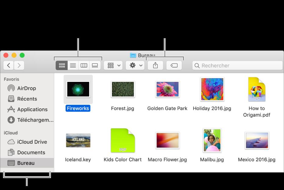 Une fenêtre du Finder avec la barre latérale du Finder à gauche. Dans le coin supérieur gauche de la fenêtre se trouvent quatre boutons sur lesquels vous pouvez cliquer pour changer l'affichage des éléments de la fenêtre du Finder. À droite, se trouvent deux boutons sur lesquels vous pouvez cliquer pour partager ou marquer les fichiers sélectionnés.