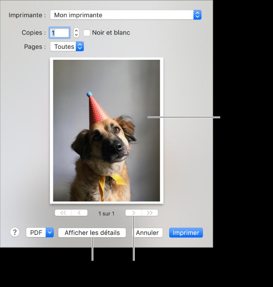 Les icônes du menu contextuel Imprimante indiquent l'état de l'imprimante. La zone de dialogue Imprimer affiche un petit aperçu du document à imprimer. Cliquez sur le bouton Afficher les détails pour afficher toutes les options d'impression.