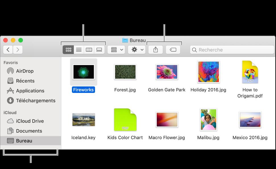 Une fenêtre du Finder avec la barre latérale du Finder sur la gauche. En haut à gauche de la fenêtre se trouvent quatre boutons, qui permettent de modifier l'affichage des éléments dans la fenêtre du Finder. Sur la droite se trouvent deux boutons permettant de partager les fichiers sélectionnés ou de leur associer un tag.