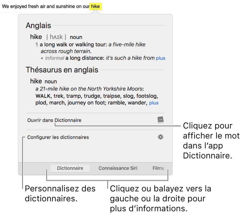 La fenêtre Rechercher affiche le dictionnaire et les définitions du thésaurus pour un mot.