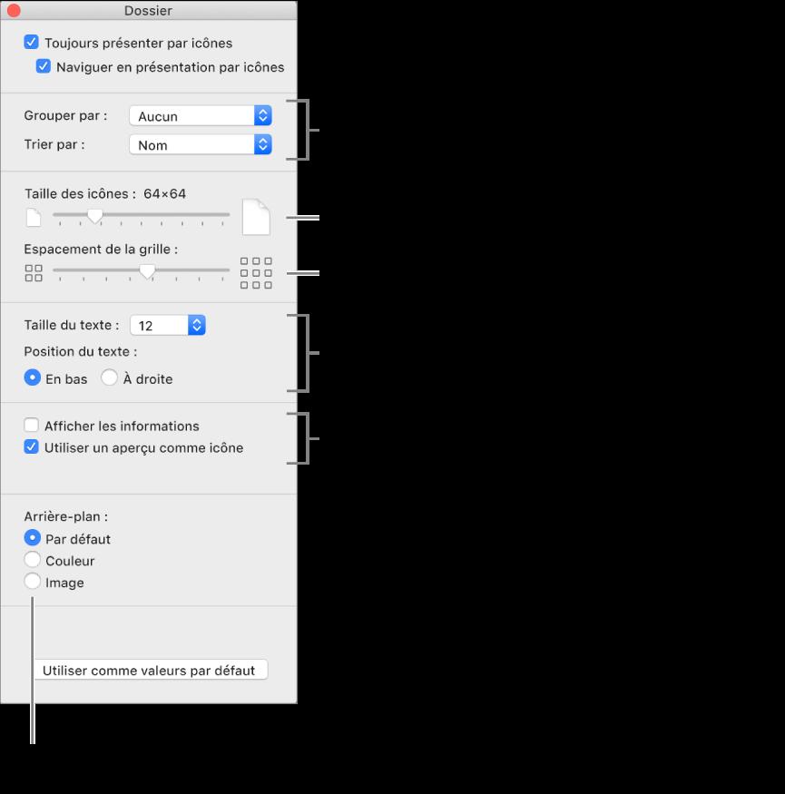 Options de la présentation par icônes: Vous pouvez choisir le mode d'organisation et de tri des groupes, définir la taille des icônes, définir l'espacement entre les icônes, choisir une taille de police pour les étiquettes d'éléments, sélectionner la position de l'étiquette, afficher des informations sur les éléments, comme la taille du fichier et le nombre d'éléments dans un dossier, afficher des informations d'aperçu dans les icônes et choisir une couleur, une image ou l'arrière-plan par défaut pour la fenêtre.