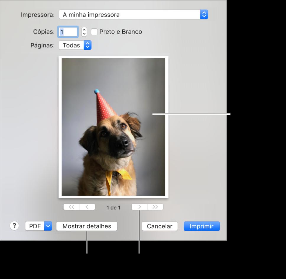 """Os ícones no menu pop-up Impressora indicam o estado da impressora. A caixa de diálogo Imprimir apresenta uma pequena pré-visualização dos seus trabalhos de impressão. Para ver as opções de impressão, clique em """"Mostrar detalhes""""."""
