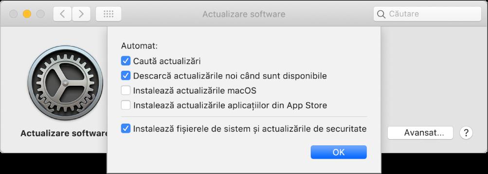Opțiunile Avansat pentru preferințele Actualizare software.