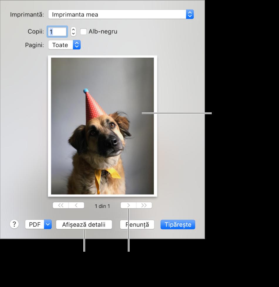 Pictogramele din meniul pop-up Imprimantă indică starea imprimantei. Dialogul Tipărire afișează o previzualizare de mici dimensiuni a sarcinii de tipărire. Faceți clic pe butonul Afișează detalii pentru a vedea toate opțiunile de tipărire.