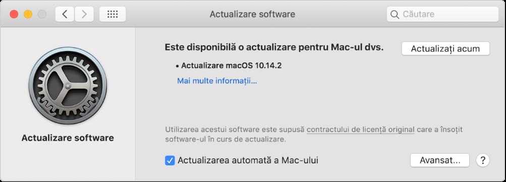 Preferințele Actualizare software arătând că este disponibilă o actualizare.