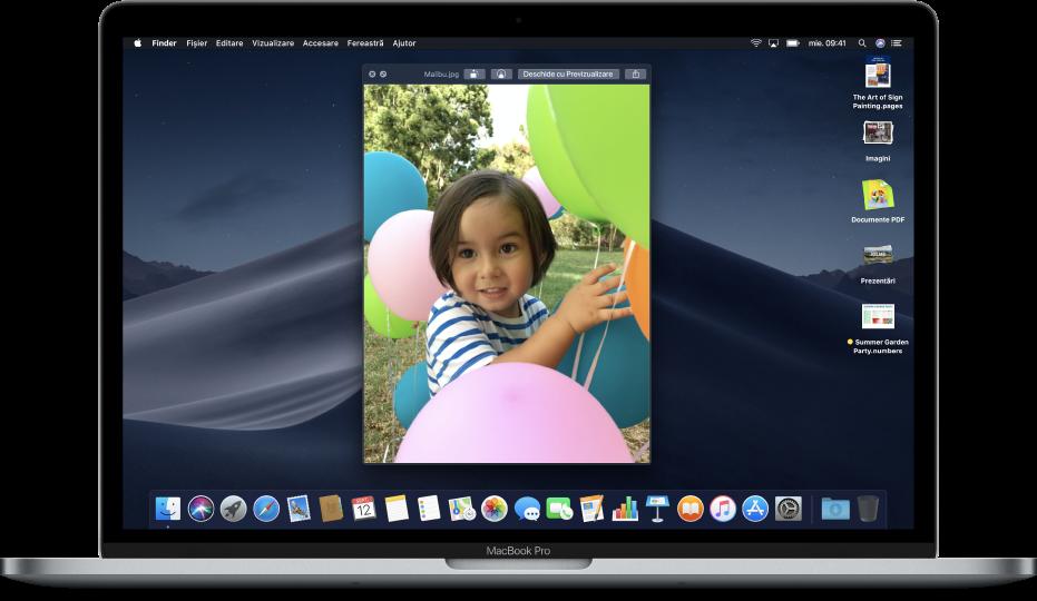 Un desktop Mac cu o fereastră Privire rapidă deschisă și stive pe desktop de-a lungul marginii din dreapta a ecranului.