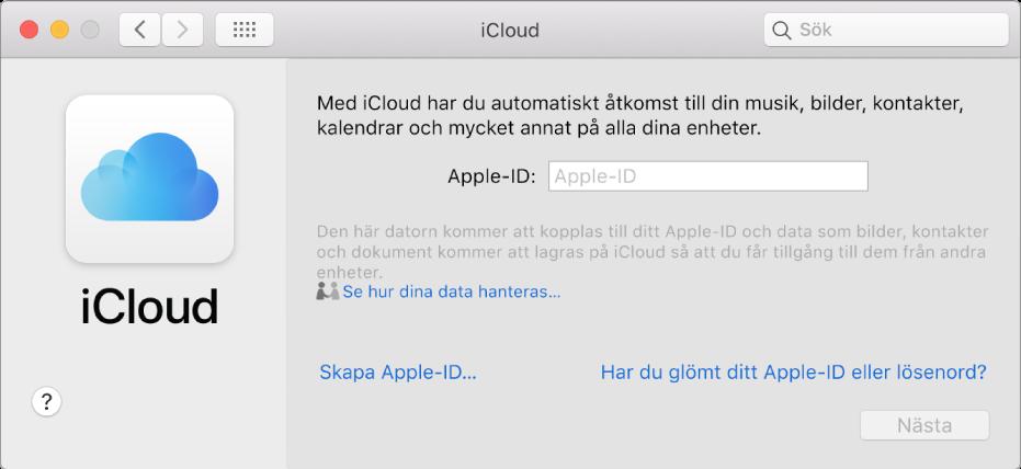 Inställningspanelen iCloud där ett Apple-ID och ett lösenord kan anges.