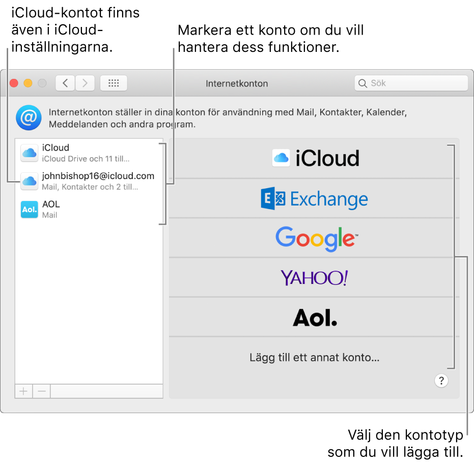 Inställningspanelen Internetkonton med konton i listan till höger och tillgängliga kontotyper i listan till vänster.