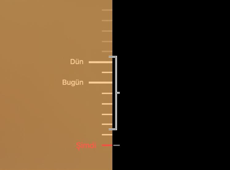 Yedekleme zaman çizelgesindeki işaret çentikleri. Kırmızı işaret çentiği taramakta olduğunuz yedeklemeyi belirtir.