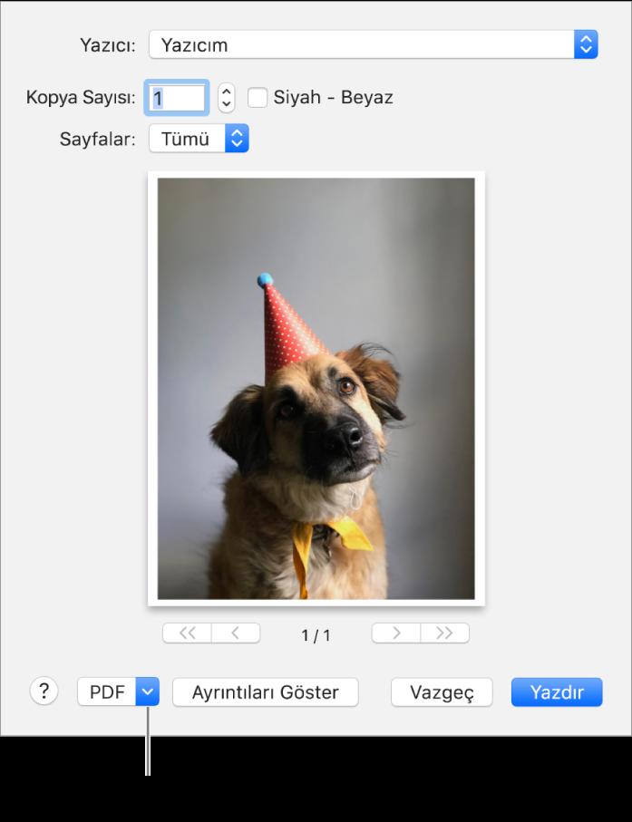PDF menüsünü tıklayın, sonra PDF Olarak Kaydet'i seçin.