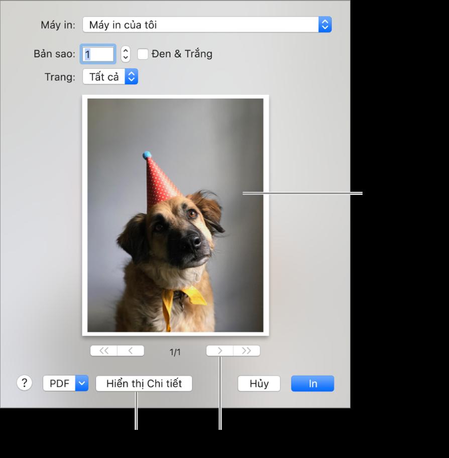 Các biểu tượng trong menu bật lên Máy in biểu thị trạng thái của máy in. Hộp thoại In hiển thị bản xem trước nhỏ cho tác vụ in. Bấm vào nút Hiển thị chi tiết để xem tất cả các tùy chọn in.