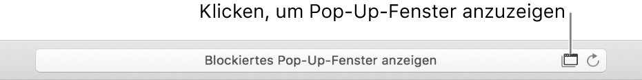 Intelligentes Suchfeld mit einem Symbol rechts, um Pop-Up-Fenster zu erlauben