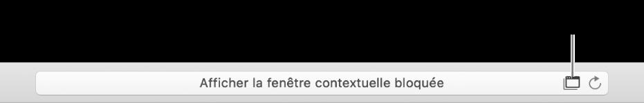 Le champ Recherche intelligente affichant une icône à droite pour autoriser les fenêtres contextuelles.