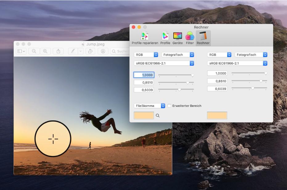 """Der Bereich """"Rechner"""" mit den Farbwerten für einen Pixel in zwei unterschiedlichen Farbprofilen."""