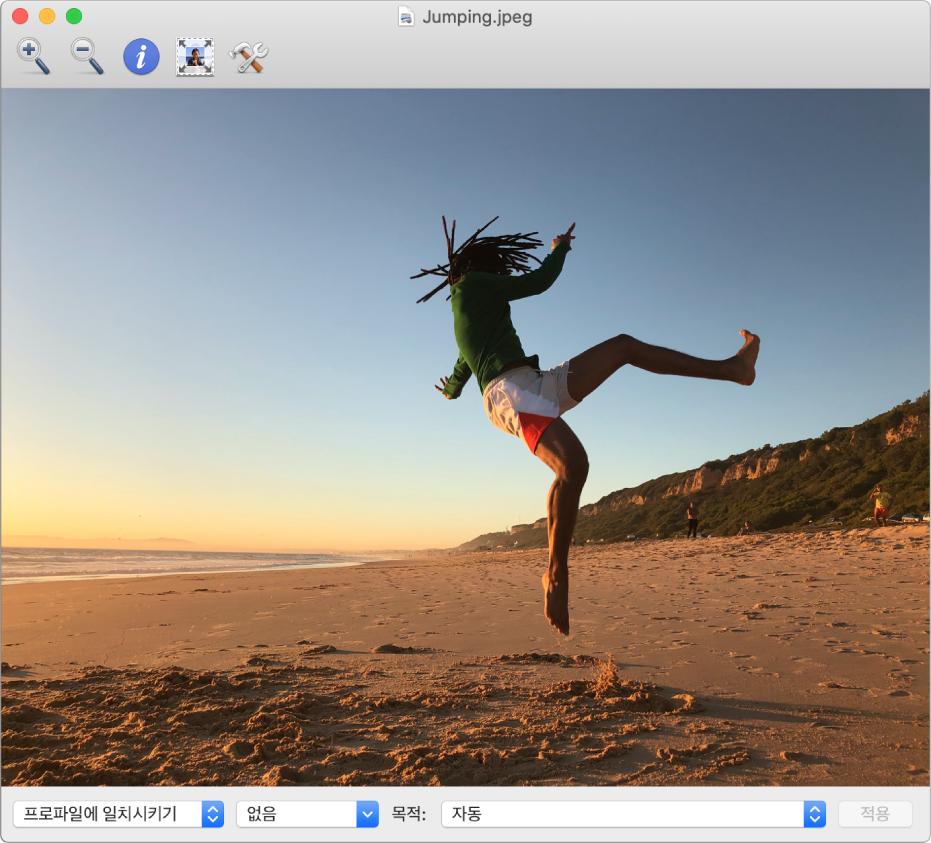 해변에서 공중으로 뛰어오르는 남자의 이미지를 표시하는 ColorSync 유틸리티 윈도우.