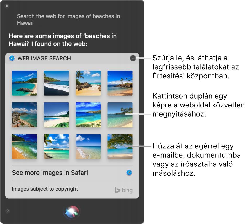 """A Siri ablaka, amelyben a következő kérésre vonatkozó eredmények láthatók.""""Search the web for images of beaches in Hawaii."""" Az eredményeket kitűzheti az Értesítési központban, kattinthat duplán a képre, ha meg szeretné nyitni a képet tartalmazó weboldalt, vagy e-mailbe, dokumentumba, illetve az íróasztalra húzhatja a képet."""
