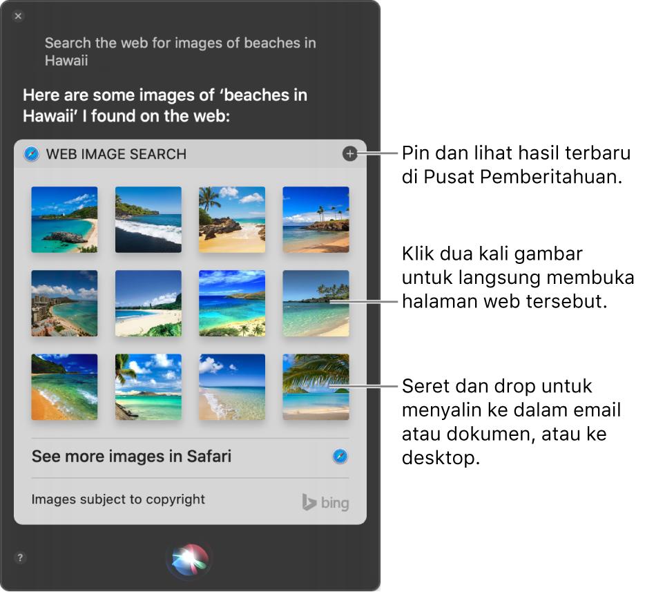 "Jendela Siri menampilkan hasil Siri untuk permintaan ""Search the web for images of beaches in Hawaii"". Anda dapat mengepin hasil ke Pusat Pemberitahuan, mengeklik dua kali gambar untuk membuka halaman web yang berisi gambar, atau menyeret gambar ke dalam email atau dokumen atau ke desktop."